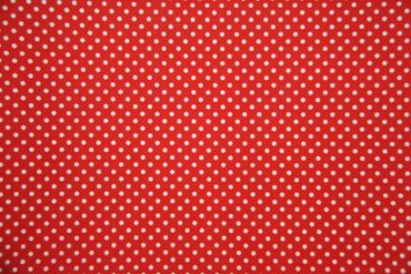 Baumwolle Stoff mit Punkten Enten Meterware Dekorationsstoff Bekleidungsstoff – Bild 2