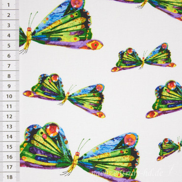 Die kleine Raupe Nimmersatt Schmetterlinge – Bild 2