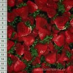 Timeless Treasures Fruits Erdbeere
