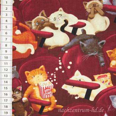 Timeless Treasures Katzen im Kino – Bild 1