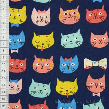 Whisker & Tails Katzen bunt
