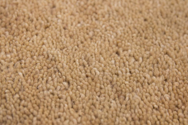 Flachflor Teppich New Zealand - Wellington Beige | 100% Wolle – Bild 4