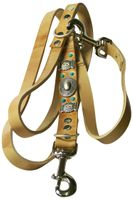 NAVAJO: Natural leather dog leash, Mexico-inspired with turquoise studs & concho