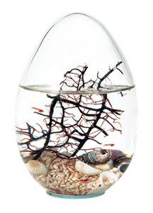 Beachworld 13cm Oval mit Gorgonie geschlossenes Miniaquarium