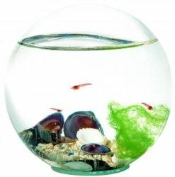 Beachworld 12,5cm Classic Sand Kugel geschlossenes Miniaquarium – Bild 1