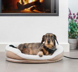 Beheiztes Haustierbett Hundebett – Bild 2