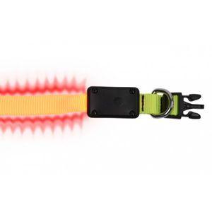 LED Hundehalsband  XS - in zwei Farben    – Bild 10