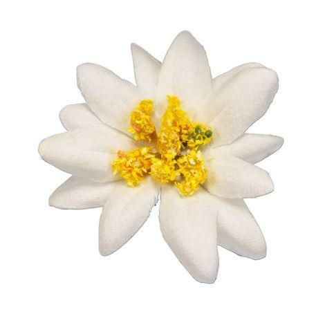 Pin Edelweiß-Stoffblüte (creme-weiß) Bild 1