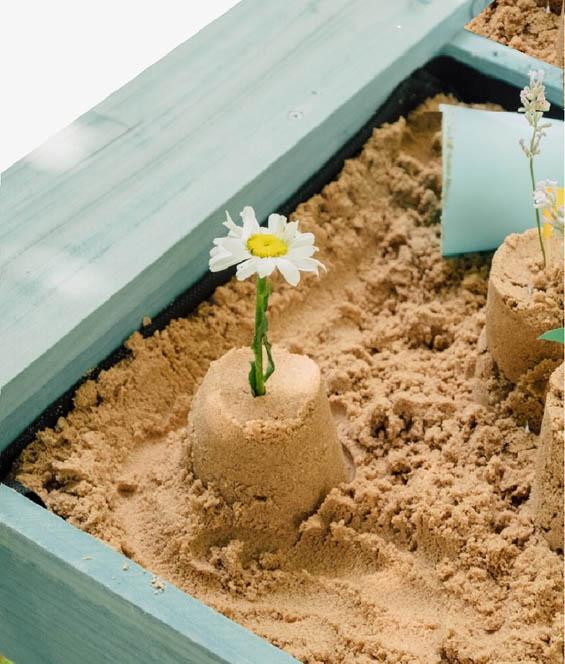 Sand & Wasser & Erde