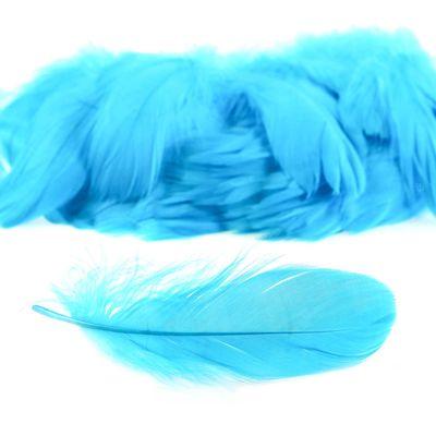 100 Gänsefedern, 10x3cm-3x1cm, himmelblau, zum Basteln Verzieren als Deko