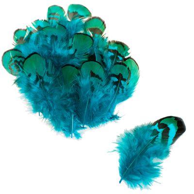 20 Hühnerfedern f. zB Federkostüm ca. 4,5~10,5x1~3 cm gefärbt, Farbe türkisgrün