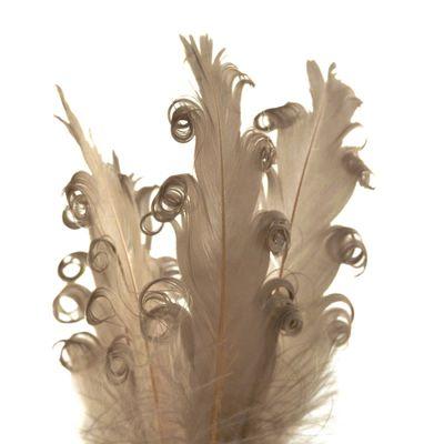 20 Gänsefedern lockig, 15-18cm, verschiedene Farben DIY Deko Federn – Bild 10
