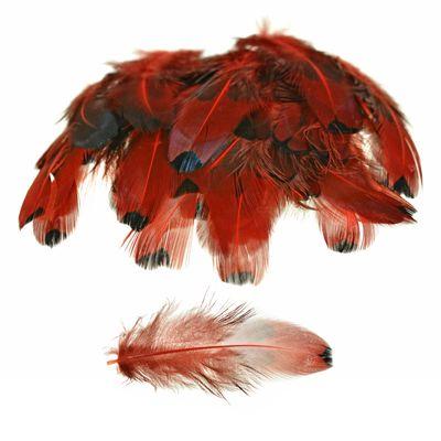 100 Federn Hühnerfedern Schmuckfedern f. Traumfänger Faszinatoren usw 4~8x1~2cm