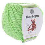 K1437 pastellgrün