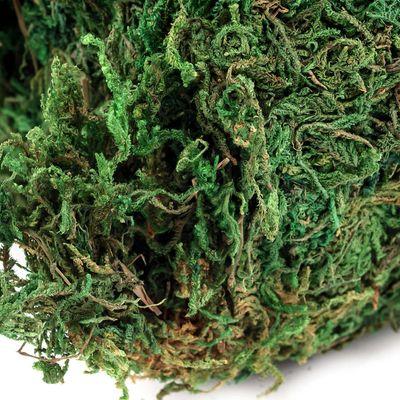 1 Pack / 45 - 50g natürliches Deko-Moos, grün Floristik Krippenbau Modellbau – Bild 4
