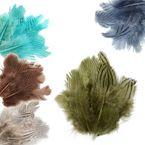20 Fasanenfedern 5-11cm Farbwahl Fasching Kostüm Deko Flaum gestreift Streifen 001