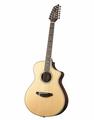 Breedlove Stage Series 2015 12-String Concert Westerngitarre