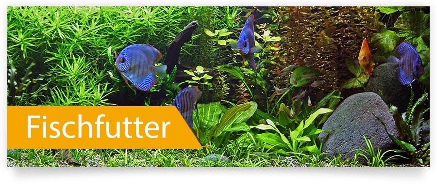 Fischfutter für Ihr Aquarium und Ihre Fische, Garnelen, Wirbellose jetzt auf Zoofux.de