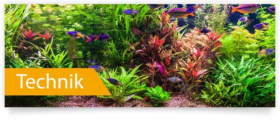 Technik für Ihr Aquarium - Jetzt auf Zoofux.de