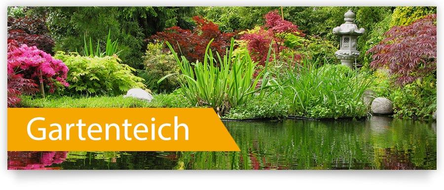 Pflegemittel für Ihren Gartenteich - Jetzt bei Zoofux.de