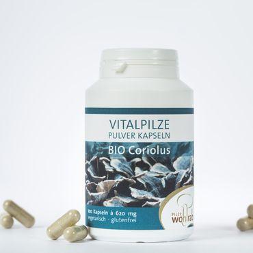 Coriolus 100 Pulverkapseln Bio – Bild 2
