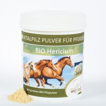 Hericium erinaceus Bio Pulver für Tiere – Bild 2