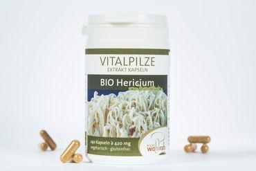 Aktion Bio Vitalpilze Hericium Extrakt 240 Kapseln – Bild 2