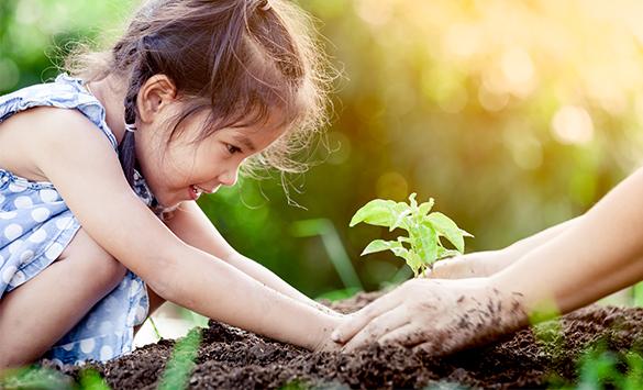 Nachhaltigkeit lernen