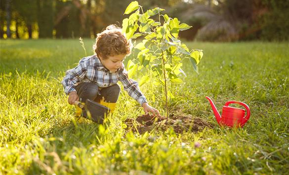 Pflanzen, Natur & Gärtnern
