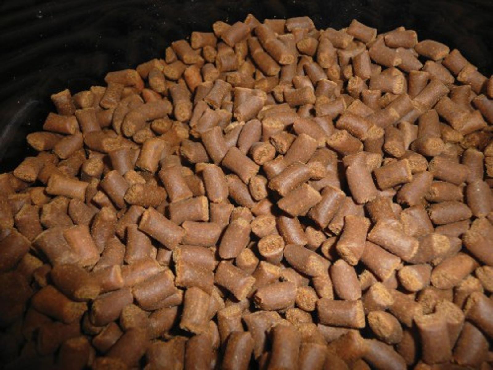 vitalis Central/Sth American Cichlid Pellets 300 g Ø 1 mm für mittel- u. südamerikanische Buntbarscharten – Bild 2