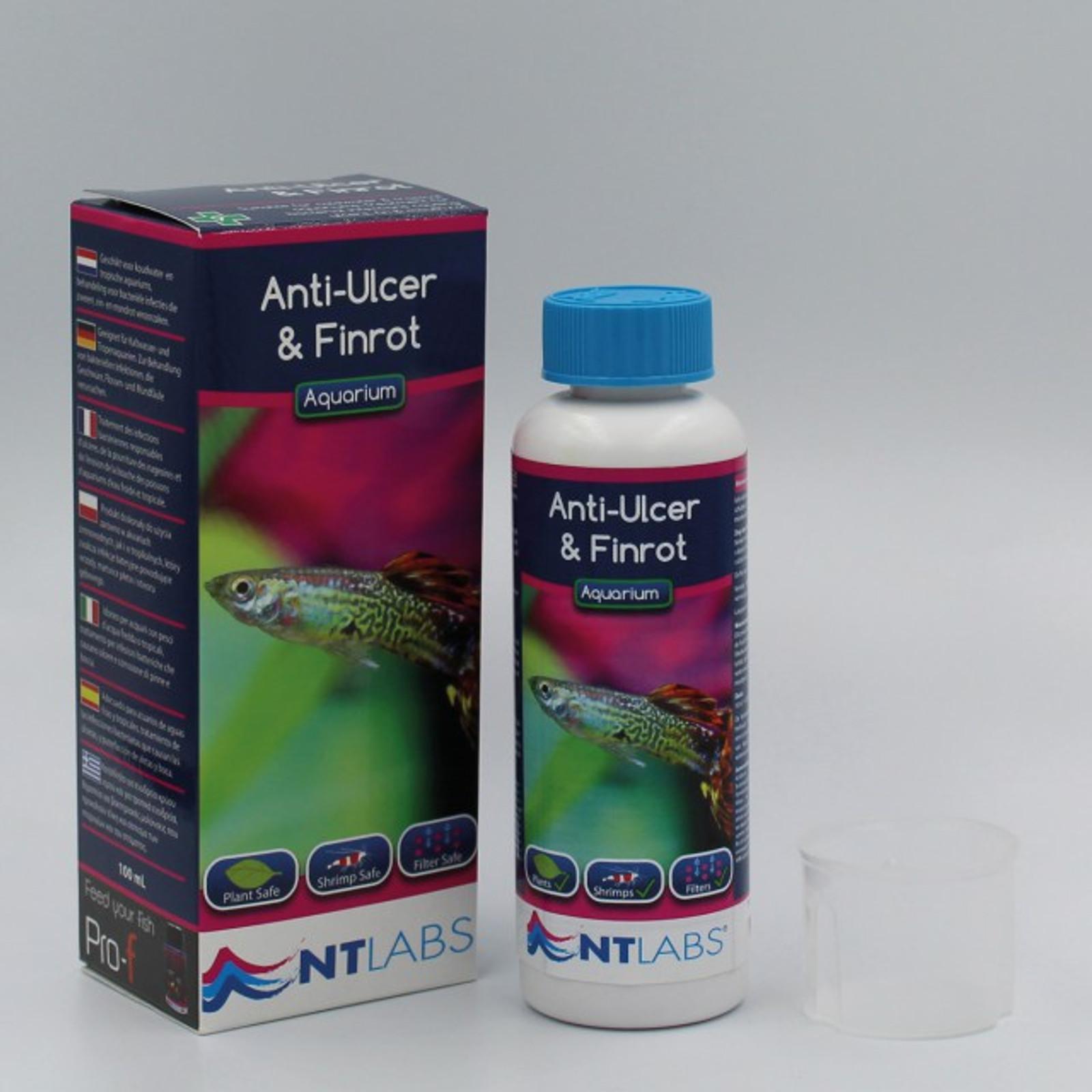Anti Ulcer & Finrot / gegen Geschwüre und Flossenfäule   – Bild 1