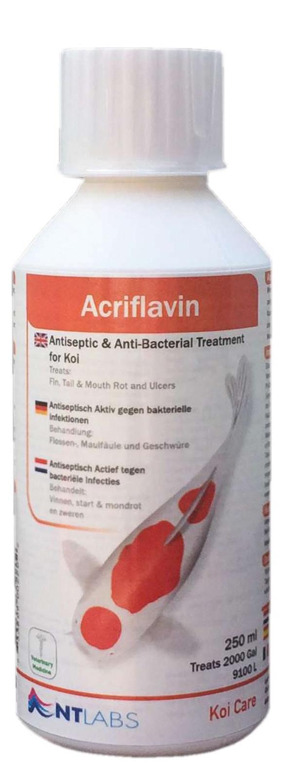 Koi Care Acriflavin, 500 ml - Antiseptikum gegen Bakterien
