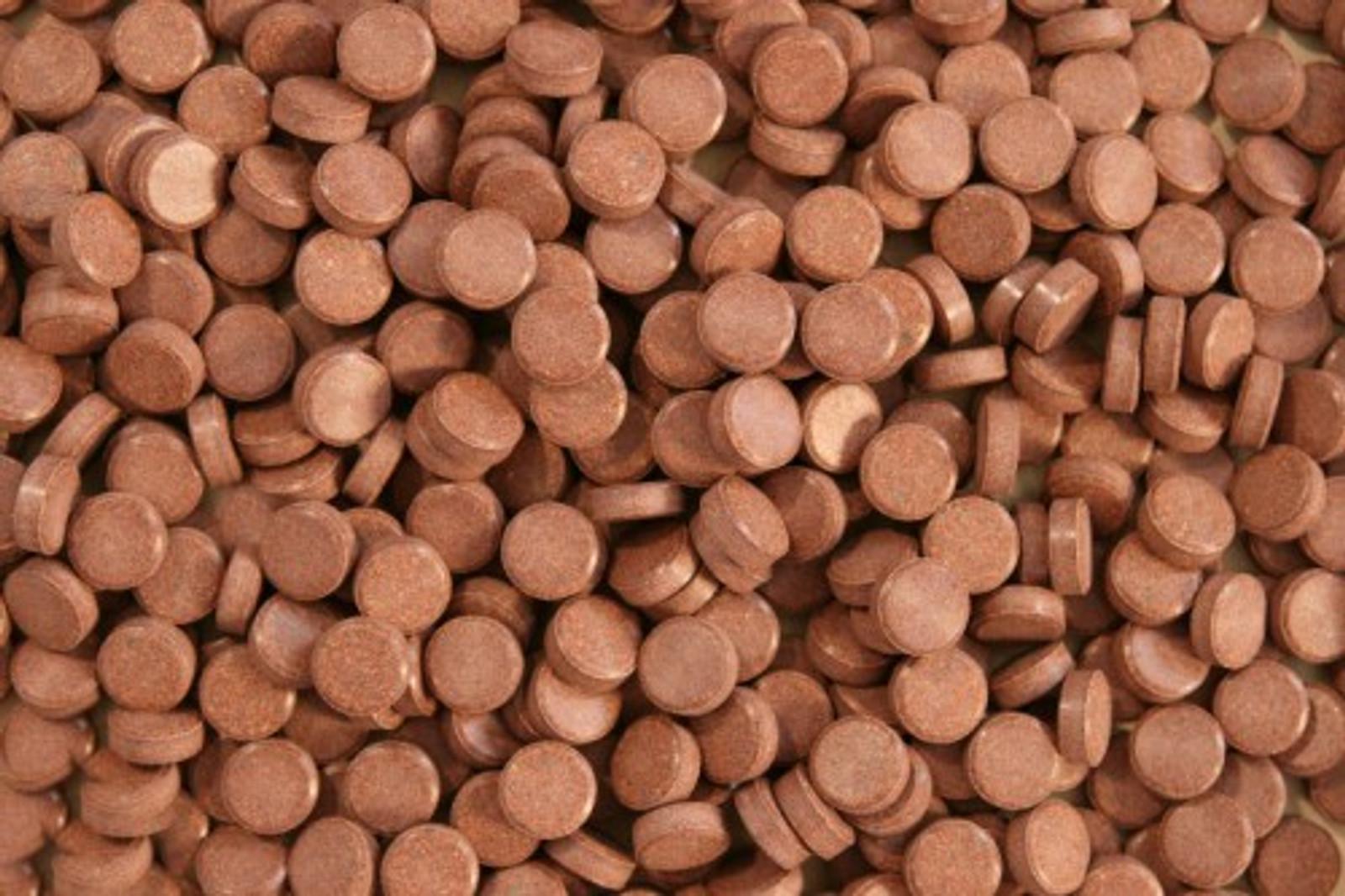 Aquaristik-Paradies Cichliden Tabletten 1.000 g (ca. 1.250 ml) - verwendbar als Haft- und Bodentabletten