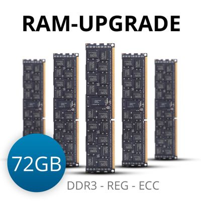 RAM-upgrade to 72 GB