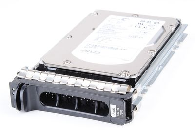 "Dell 73 GB 10K SAS 3.5"" Hot Swap Festplatte - 0RY489 / RY489"