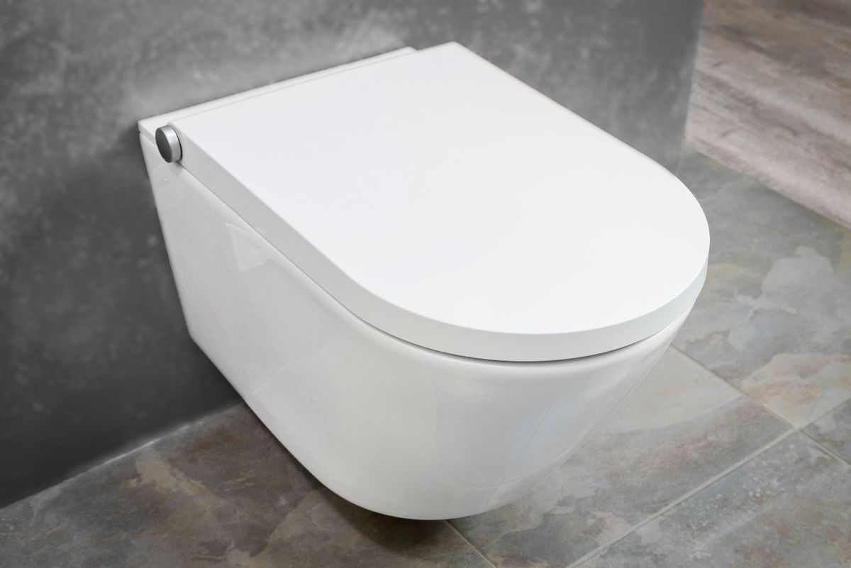 Shower toilet BERNSTEIN DUSCH-WC PRO+ 1102 special saving package 8 - and sanitary module for wall-mounted WC - white – Bild 2