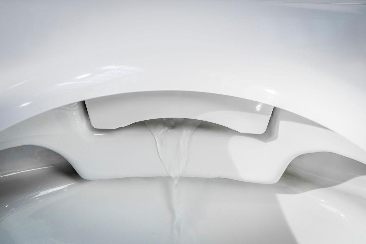 WC-Sparpaket 8: BERNSTEIN DUSCH-WC PRO+ 1102 Komplettanlage & Sanitärmodul 805 in Weiß – Bild 7