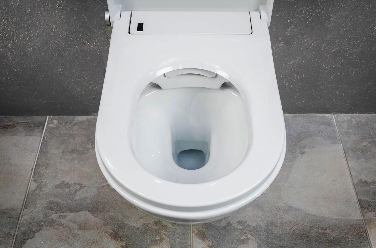 WC lavant BERNSTEIN DUSCH-WC PRO+ 1102 offre spéciale pack économique 9 avec module sanitaire 805 et plaque de déclenchement – Bild 11