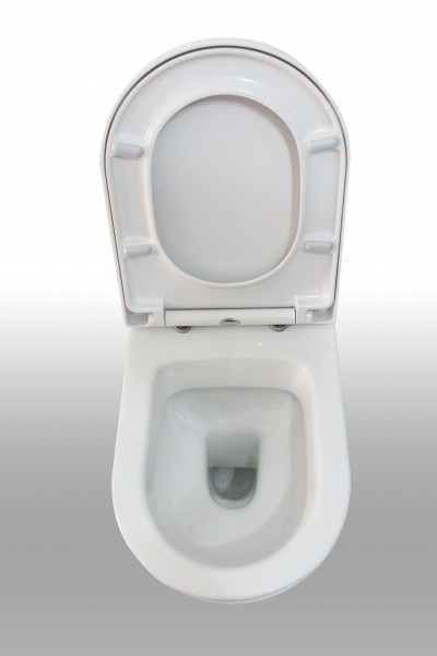 Wall Hung WC B-8030 - special saving package 11 - and support frame G3005 with  satin flush plate  – Bild 2