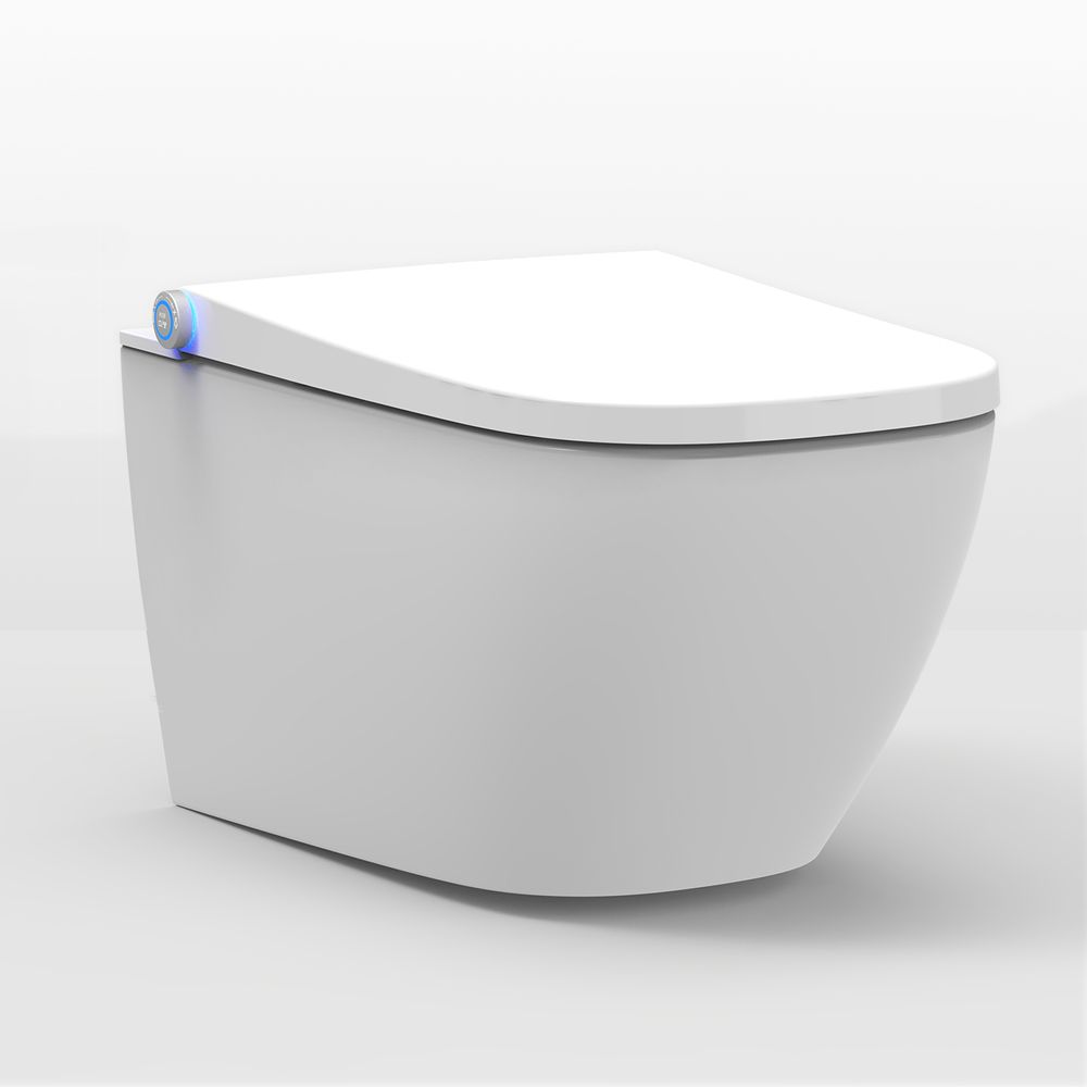 Shower toilet BERNSTEIN Basic 1104 - toilet integrated bidet function - white - rimless - japanese WC – Bild 1