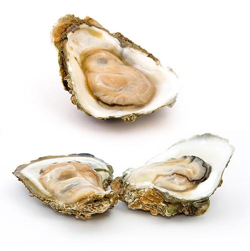 Frische Austern - Gillardeau  N3+ (Crassostrea gigas), à ca. 105g, 24 St