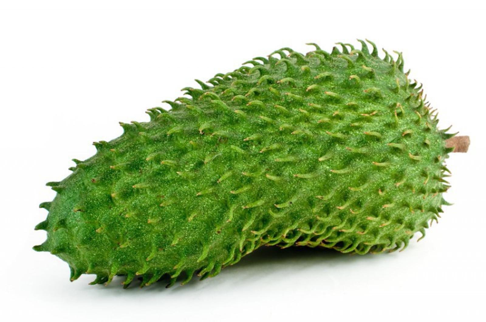Graviola 100% Frucht - Püree pur. (Guanábana, Stachelannone, Soursop, Guyabano oder Corossol), 6 KG = 60x100g Portionen