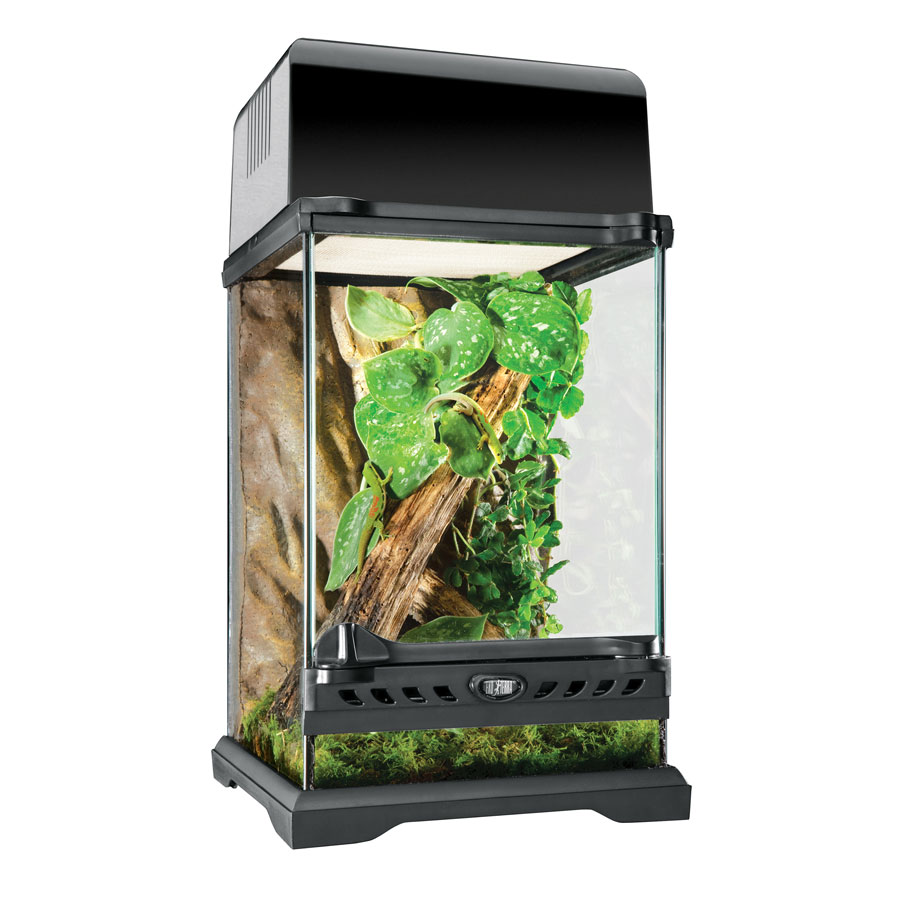 exo terra nano terrarium der terraristikshop terrarium terrarien aquarien glasterrarien. Black Bedroom Furniture Sets. Home Design Ideas