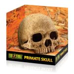 Exo Terra Primate Skull - Decorative skull for the terrarium