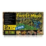 Exo Terra Forest Moss  - natural forest moss for terrariums