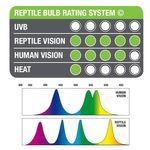 Exo Terra Reptile Vision Kompaktlampe