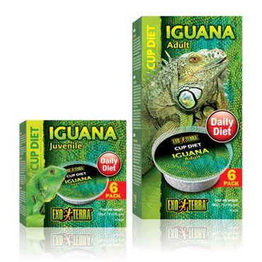 Exo Terra Cup Diet Iguana