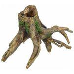 Lucky Reptile Tree Stump