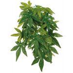 Trixie Seiden-Hängepflanze, Abutilon