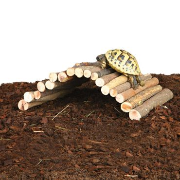 Wicker rod bridges for reptiles